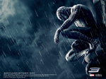 spiderman311024.jpg